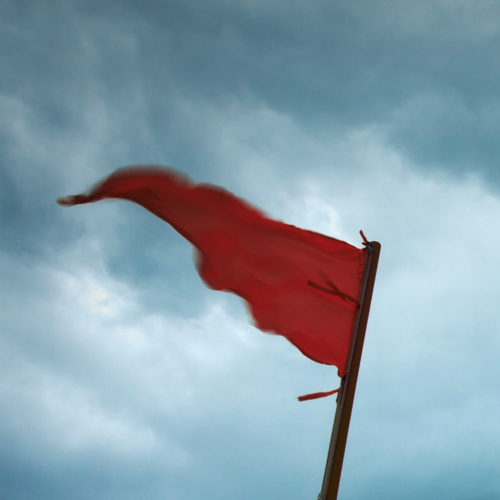 Five Signs That You Need Back Taxes Help: Red flag waving